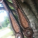 Gator Inlay Headstall